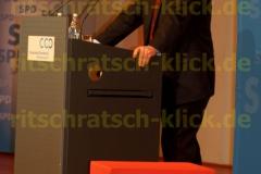 Frank Walter Steinmeier_06